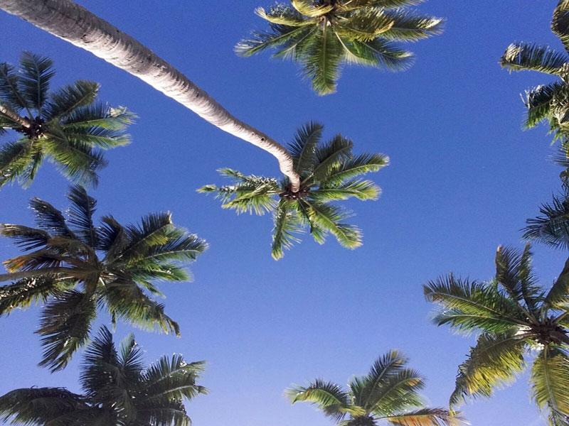 Singles en Riviera Maya, Cancún