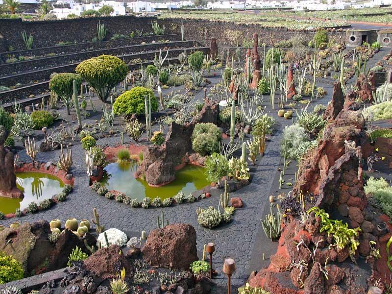 Visitando el Jardin de los Captus