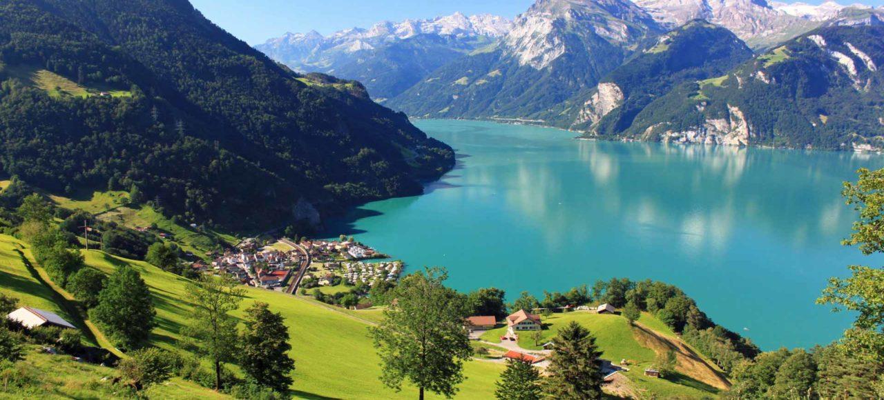 Especial Grupos y Singles Suiza y Selva Negra