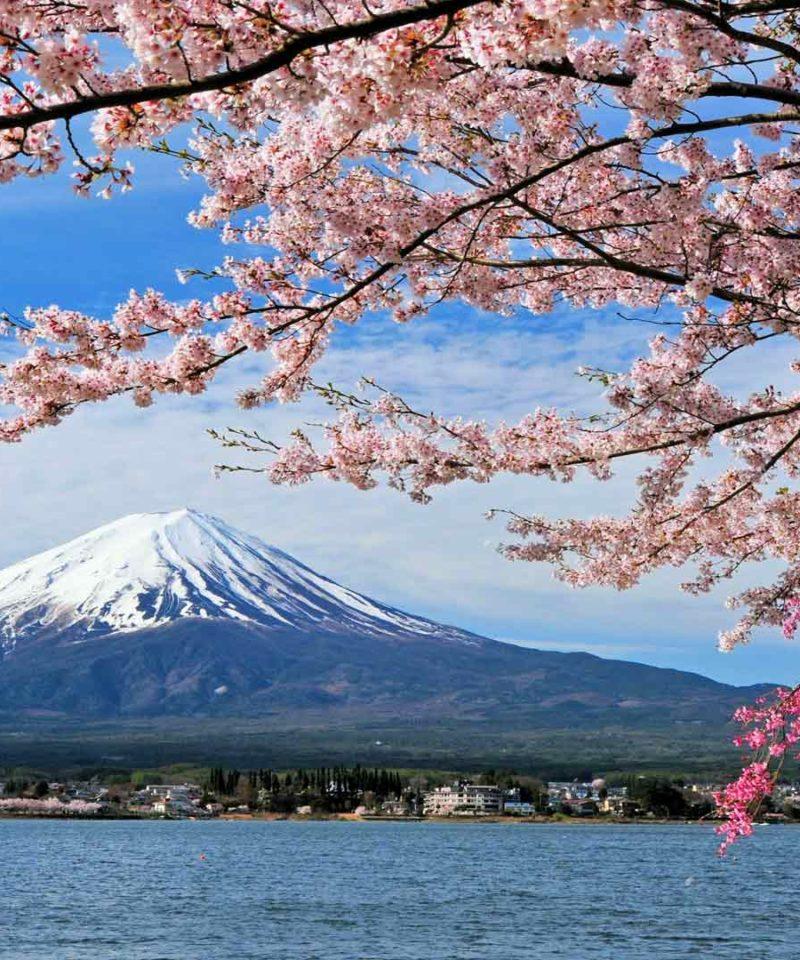 Espectacular viaje Japón compartido- Monte Fuji