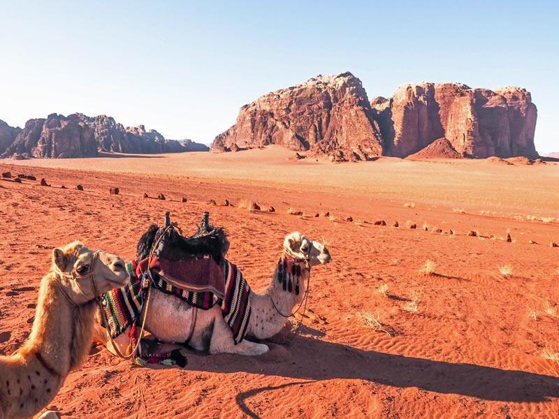 Fin de año en Jordania- Wadi-Rum