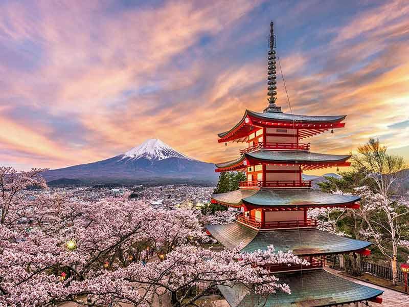 Viaje al Japon, visitando Tokio