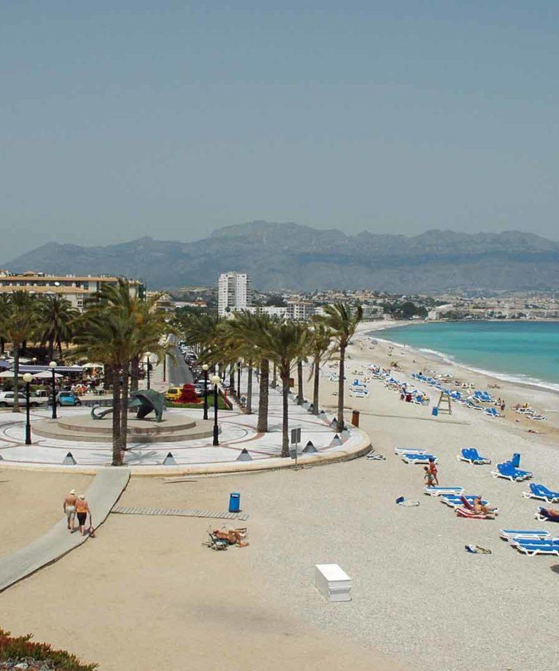 Singles Agosto en Alicante