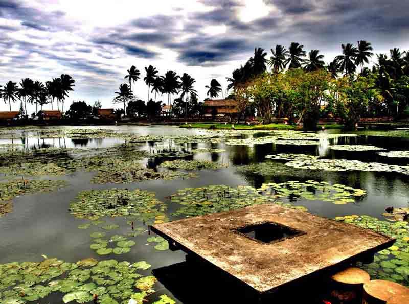 Vacaciones de Solteros en Bali