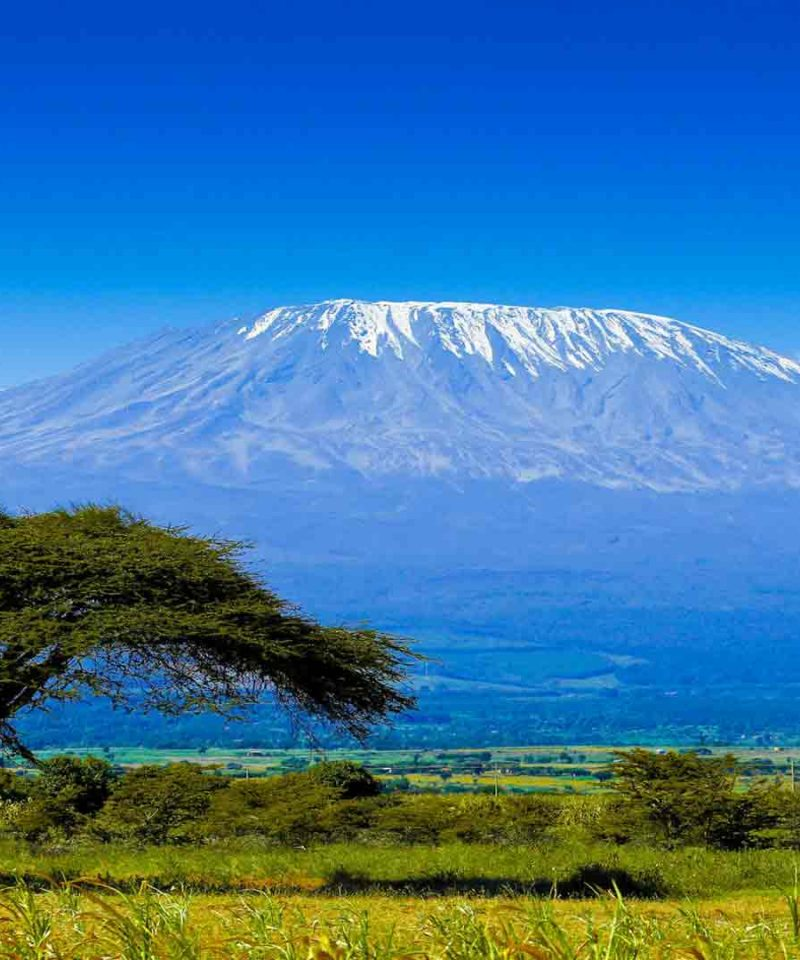 Tanzania para singles